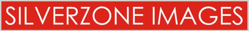 Silverzone Logo