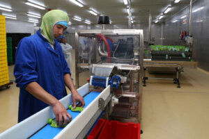 worker at food factory production line