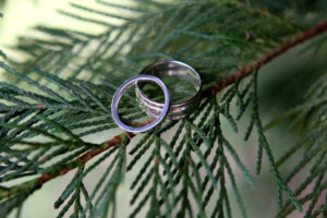 weddings rings placed on a pine leaf for wedding photography session
